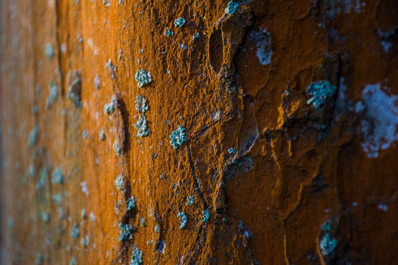 Corrosion Tests